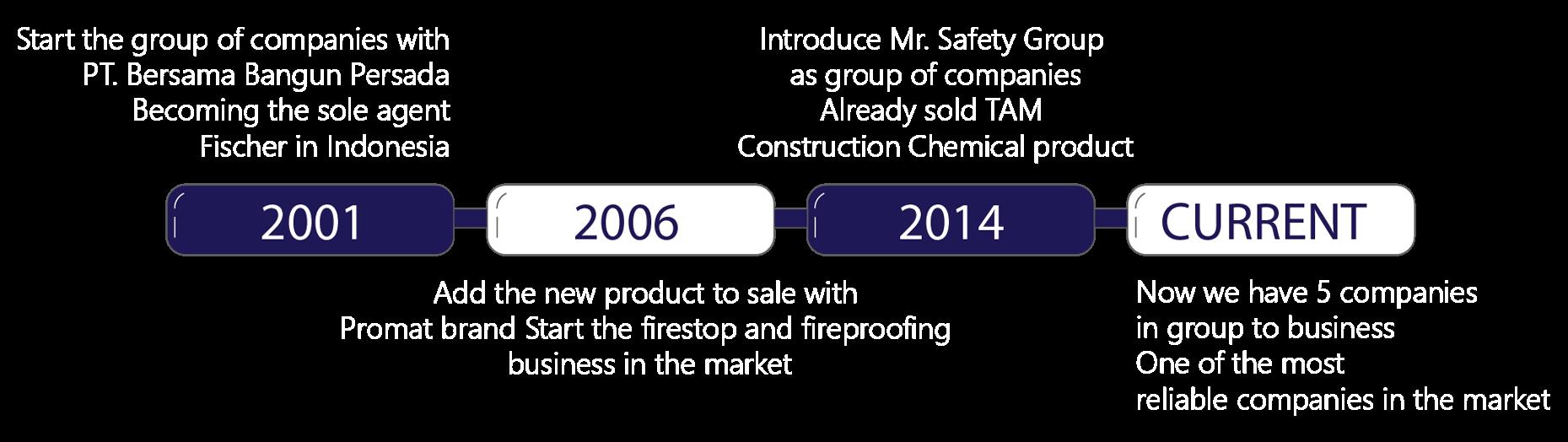 Mrsafetygroup history